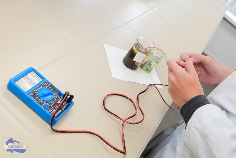Кванторианцы Кольского Заполярья готовят проекты на Международный конкурс детских инженерных команд, который впервые проходит в России