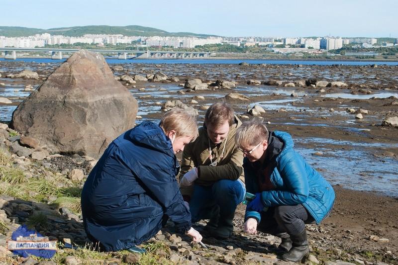 Обучающиеся Мурманской области присоединились к проекту по изучению уникальных экстремофильных организмов РФ и Японии