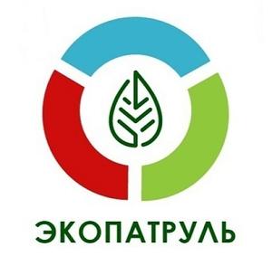 Школьники Мурманской области стали призерами Всероссийского конкурса «Экопатруль»